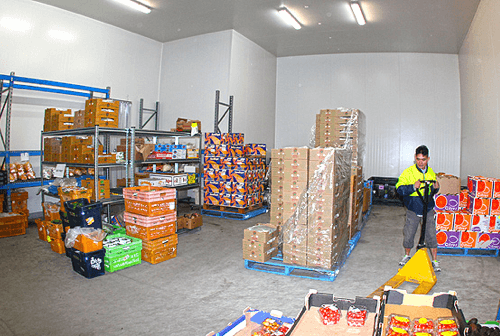 Our facilities - warehouse